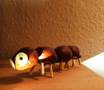 chestnut-crawler