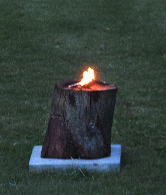 tree-stump-torch-2