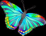 Beautiful-Butterflies-colored